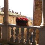 Casa di Santa Caterina's Flowers