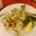Salmond Fish