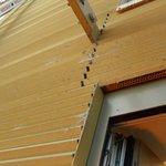 überall Spinnweben im Aussenbereich