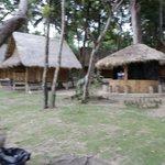 Bamboo bungalows.