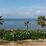 Gepflegter Strandbereich