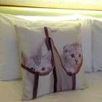 cushion with cats pic