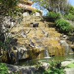 Waterfall by VIP pool