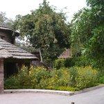 our bogus village hut