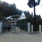 Peace  pagoda from  the foothill