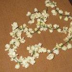 Our jasmine garland