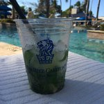 Great Mojito from the Ocean Bar and Grill delivered to you at the Pool...