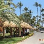 Caminos que llevan a playa o lobby del hotel