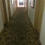 Comfort Inn & Suites at Talavi Foto
