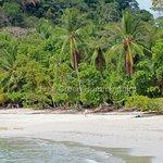 Beach of Manuel Antonio National Park
