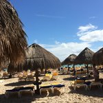 beach w/plenty of shade