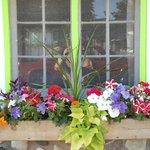 Flowerbox window