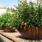 Flower pot details
