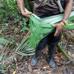Ehme making a basket for me from a palm leaf