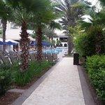 Cypress Springs Pool area