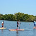 Stand Up Paddleboarding is a MUST do