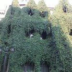 Casa no Bairro Lastarria toda coberta pela vegetação