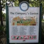 The Company Gardens are directly opposite the hotel - lots to see!