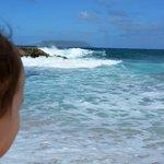 mia Figlia il grande Oceano.