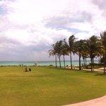 Facing the Ocean, beautiful open lawn