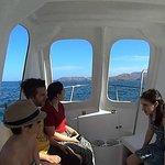 Costa Rica Diving Foto
