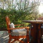 Morning sun on the patio