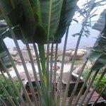 Вид на маленькую террасу с лежаками со стороны номера