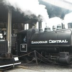 Working steam locomotives at Railroad Museum