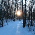 Winter Snowshoe & Ski Trails