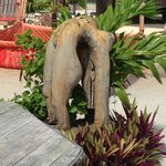 The great culture around the Kama Grounds are delightfully Belizean