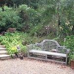 peaceful spot to appreciate the wildlife