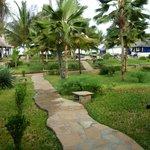 View from our Veranda towards Indian Ocean