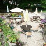 our delightful tea garden