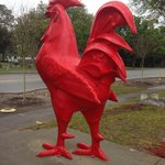 Look for the giant rooster