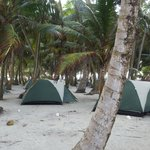 Lux accomadations San Blas