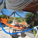 Poolside hammocks for guests only