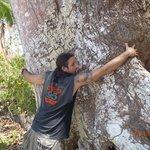Peter hugging cashew tree
