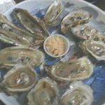 Dozen fresh oysters on the half shell