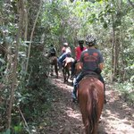 "Riding through the ""jungle"" of Belize"