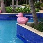 gezellig zwembad