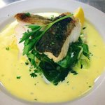 FRESH ATLANTIC COD WITH SAFFRON CREAM SAUCE