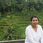 Arrozales hermosa visión,  Bali precioso