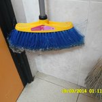 The brush when we checked in