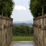 Do you see the temples of Borobodur?