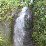 The waterfall near the Volcano.