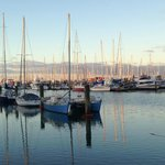 Nelson boat harbour