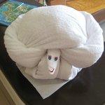 Towel art.....