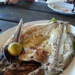 Grilled Siakap Fish