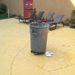 poubelle sale en plein milieu de l'espace piscine