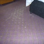 Threadbare Carpet